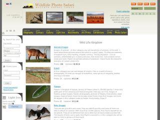 Náhled odkazu http://www.wildlife-photo.org/