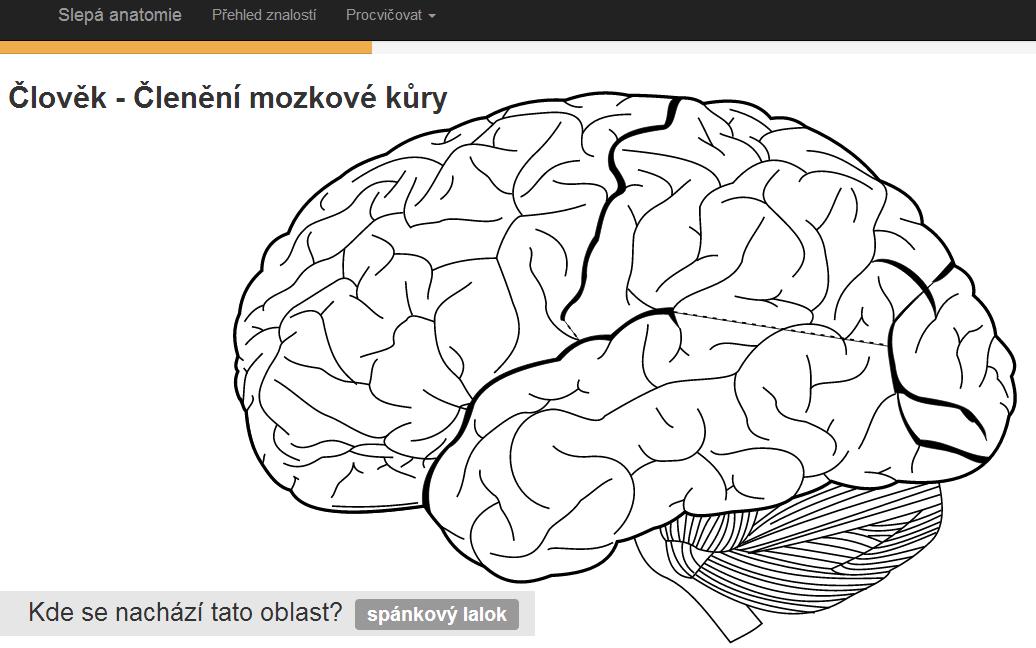 Náhled odkazu http://www.slepaanatomie.cz/